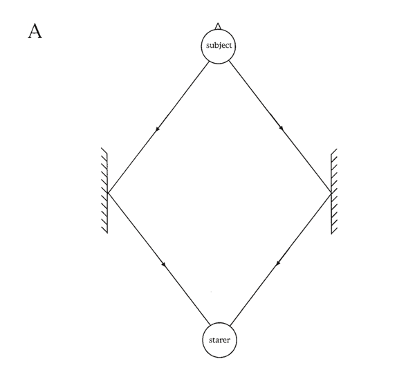 Figure 5A. Diagrams showing the positions of starers and subjects in experiments involving mirrors,