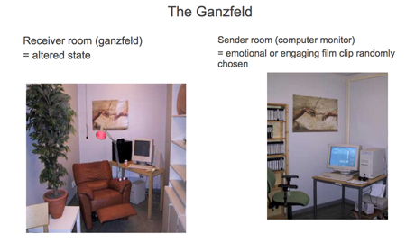 psi ganzfeld sender and receiver rooms