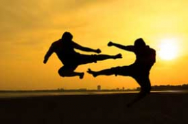 Psi and Martial Arts